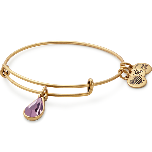Alex and Ani June Birth Month Charm Bangle With Swarovski Crystals