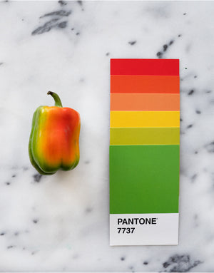 Rainbow Pepper