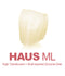 Haus ML Cut-Back Crown