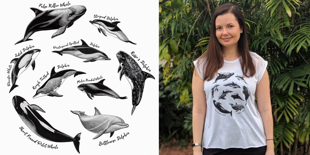 Dolphin Project Taiji Dolphin Species Art