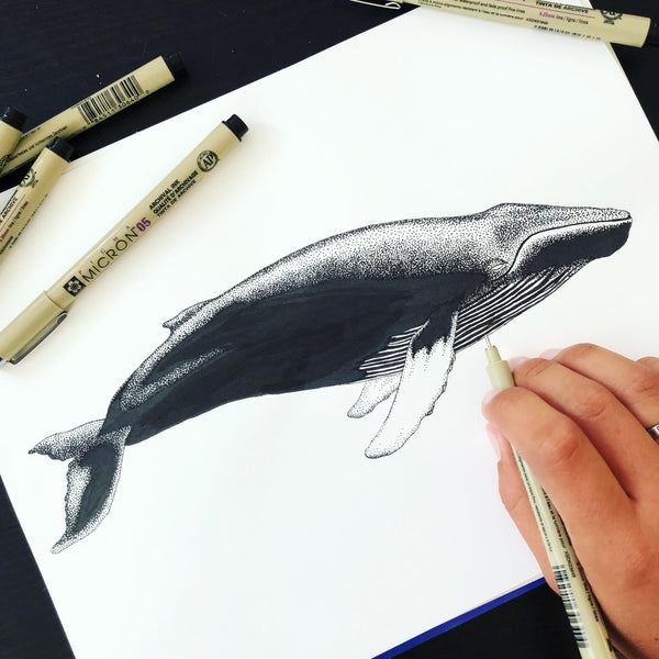 humpback whale artwork created with ink