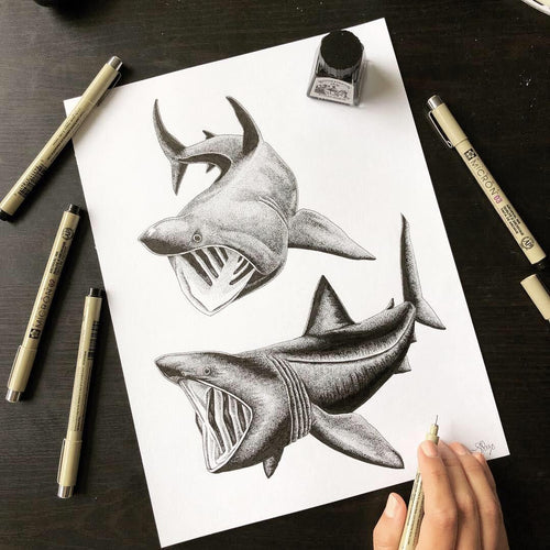 Basking Sharks Ink Original