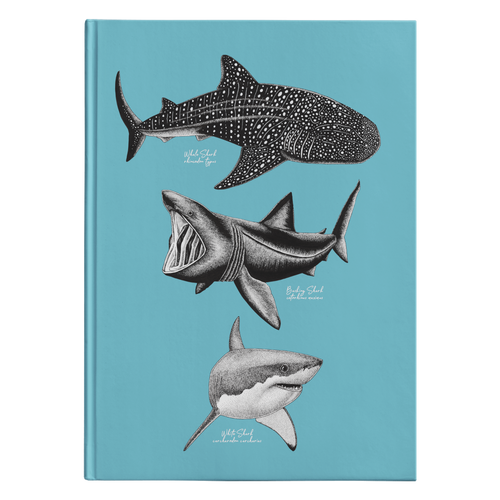 Shark Species Journal