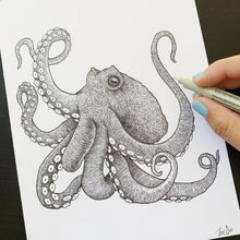Load image into Gallery viewer, octopus illustration kohola kai creative