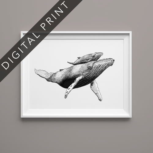 humpback whale digital art print