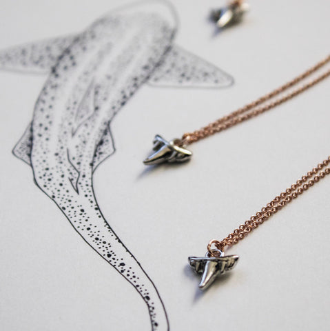 Tiny Shark Tooth Necklace