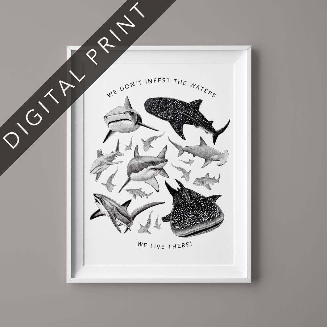 Sharks Don't Infest Waters Digital Print