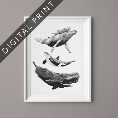 Whale Love Digital Print