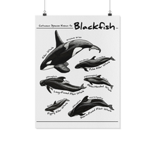 Load image into Gallery viewer, blackfish-art-poster-sample-kohola-kai-creative