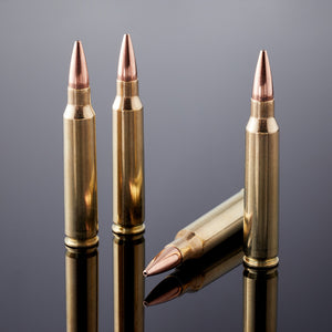 .223 Wylde / 5.56mm 75 gr HPBT Heavies