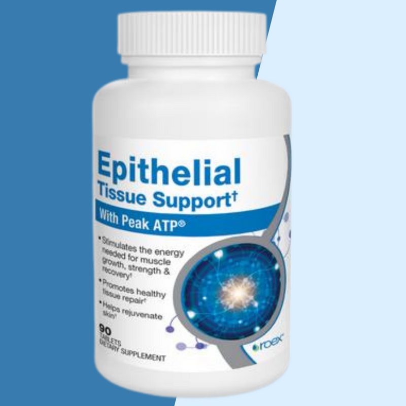 Epithelial Tissue Support