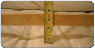 Ruler Example