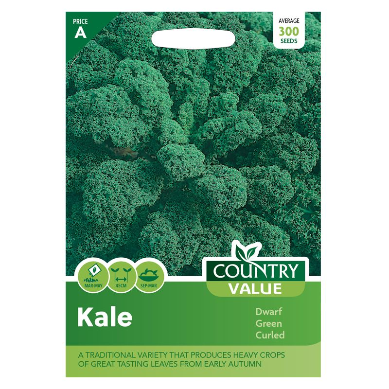 Kale Dwarf Green Curled Seeds Country Value