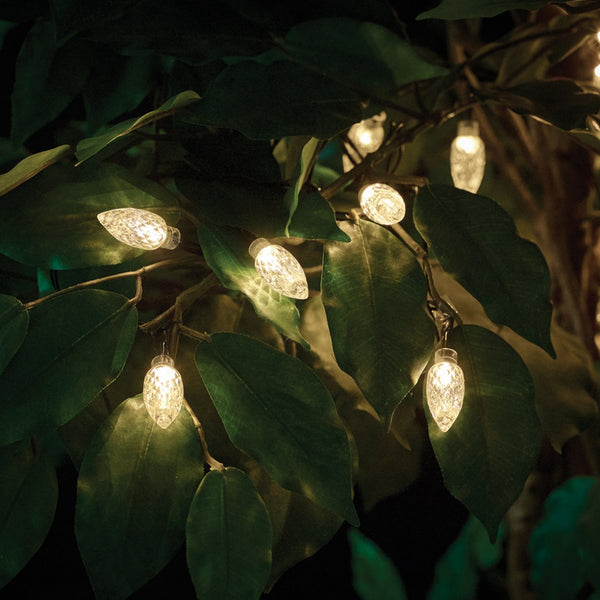 Gardman 50 Warm White Extra Large Bulb Solar Powered String Lights