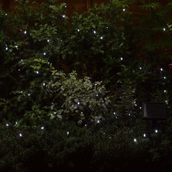 Buy Smart Garden 100 Cool White String Lights Solar Powered LEDs - Cornwall Garden Shop