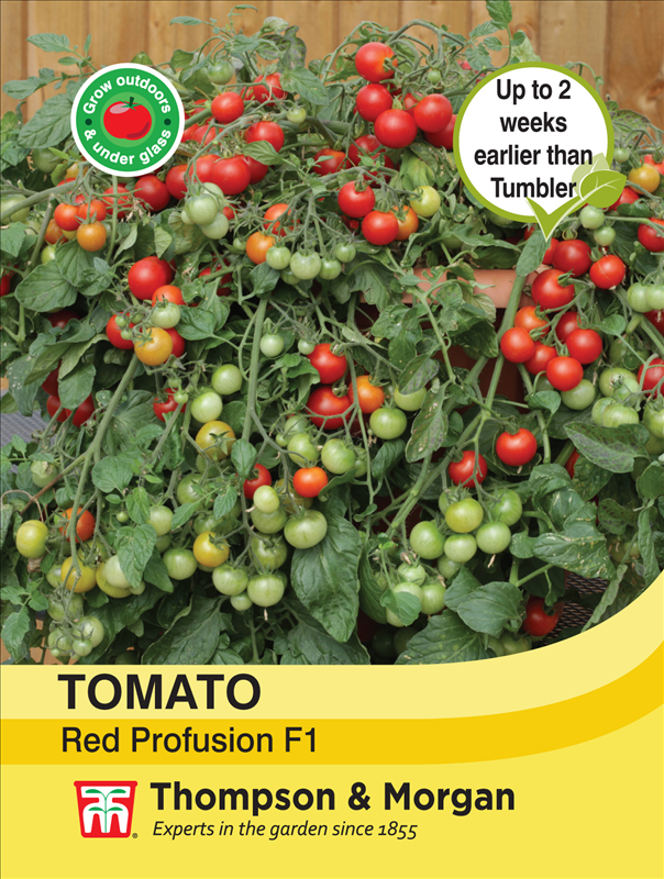 Tomato Red Profusion Seeds