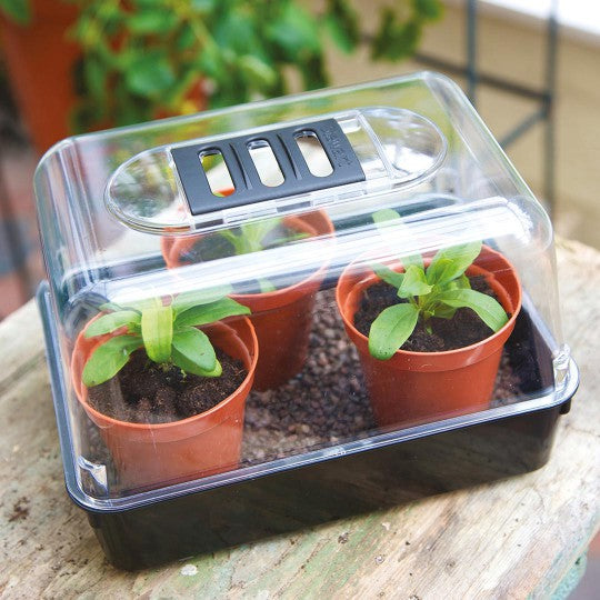 Propagator Cover Sow Grow 22cm