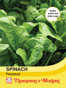 Spinach Perpetual Seeds