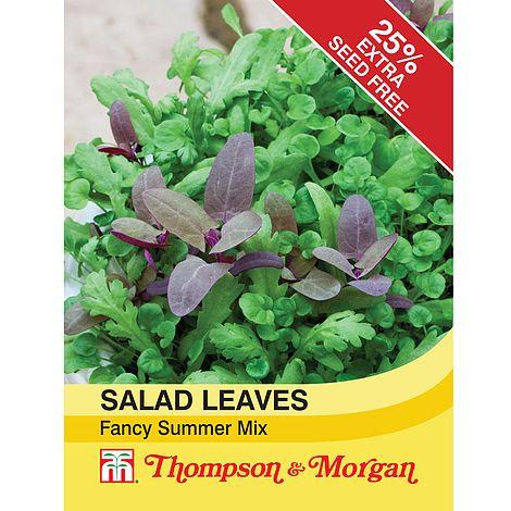 Salad Leaves Fancy Summer Mix Seeds