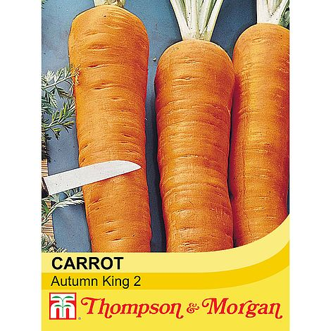 Carrot Autumn King 2 Seeds