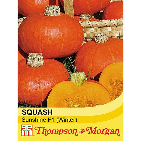 Squash Sunshine F1 (Winter) Seeds