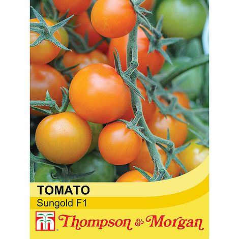 Tomato Sungold F1 Hybrid Seeds