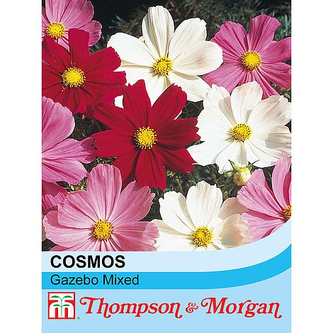 Cosmos Gazebo Mixture Flower Seeds