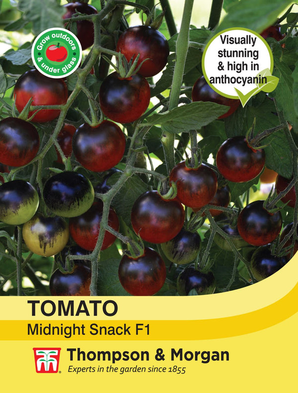 Tomato Midnight Snack Vegetable Seeds
