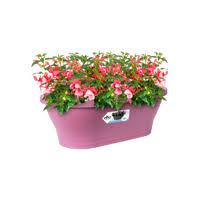 Corsica Wall Basket 39cm Outdoor Pot VIOLET