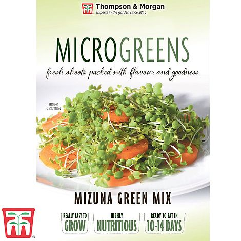 Microgreens Mizuna Green Mix Seeds