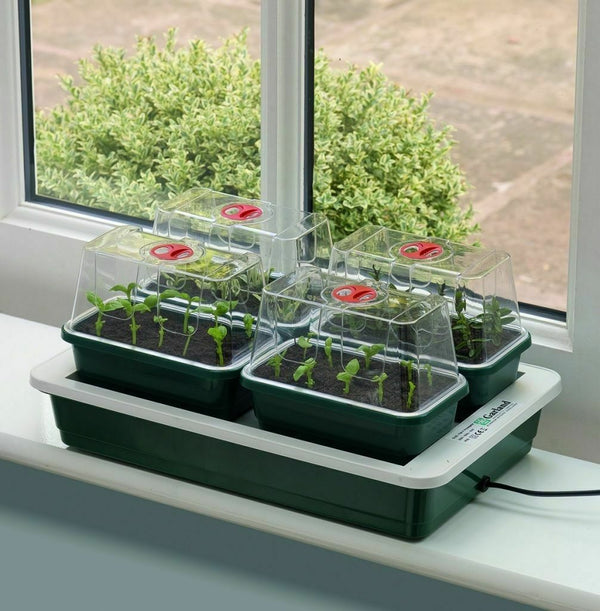 Garland Fab 4 Electric Heated Propagator Set of 4 Mini Vented Propagators