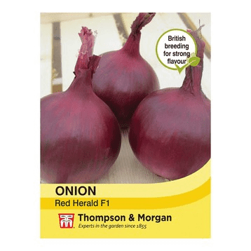 Onion Red Herald Seeds