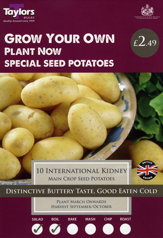 Seed Potatoes International Kidney (10)