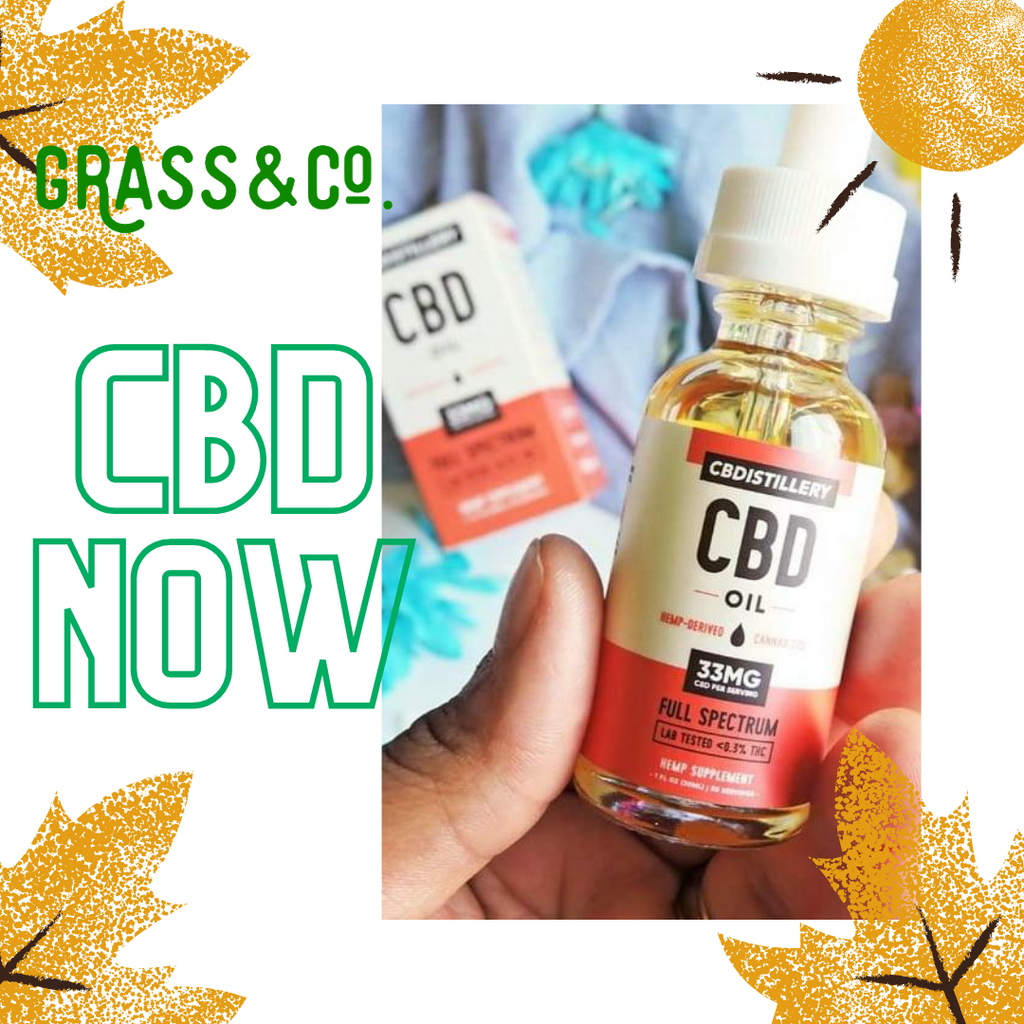 CBD OIL AT ITS BEST