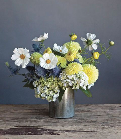 A blended bouquet of Blue Thistle, yellow Dahlias and white Hydrangea in a silver tin vase sitting on top of a wooden table.