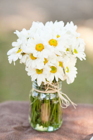 White Daisies in a mason jar with hay string bowed around the neck of the jar.