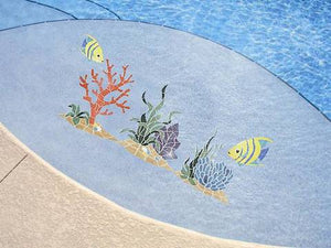 Accent Reef on Swim Out #2005, #2007 and #2006