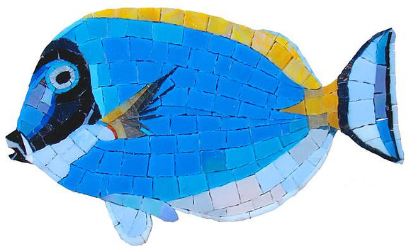Surgeon Fish Swimming Pool Mosaic Tile | Surgeon Fish Tile