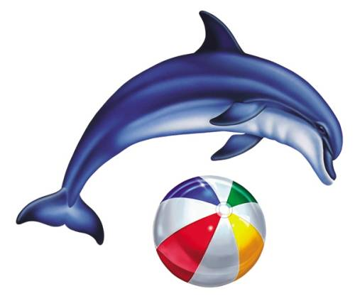 #6302 Single Dolphin Group Small