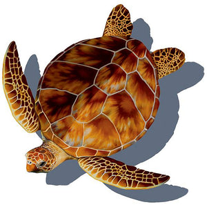 #3332 Loggerhead Turtle Small Shadow