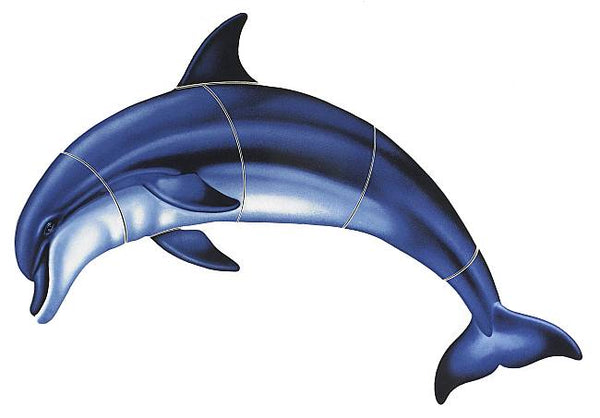 Bottlenose Dolphin A - Three Sizes
