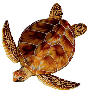#3329 Loggerhead Turtle Small