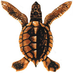 #3417 Turtle A Baby Brown