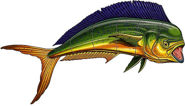 #3119 Mahi Mahi Sideview Small