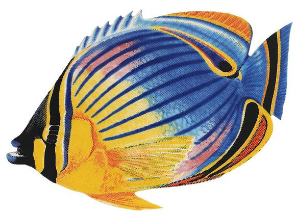 Redfin Butterfly Fish Swimming Pool Mosaic Tile | Redfin Butterfly Fish Tile