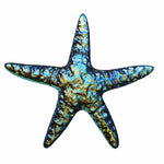 #10011 Rainbow Fusion Starfish