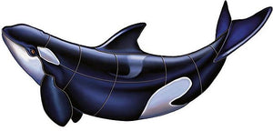 Orca Whale Swimming Pool Mosaic Tile | Orca Whale Tile