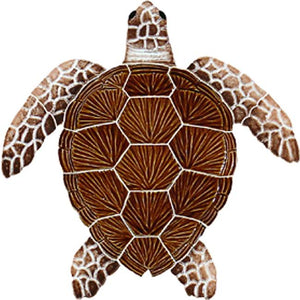 #1067 Loggerhead Turtle Small Brown
