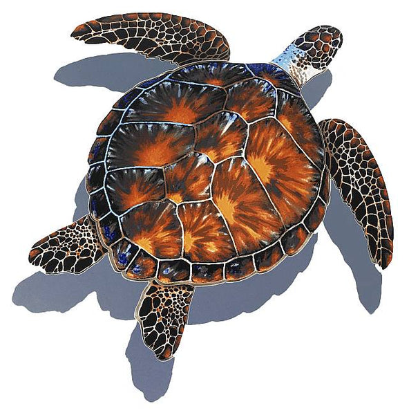 #3349 Brown Turtle Small Shadow