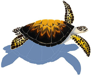 #3221 Loggerhead Turtle Small Shadow